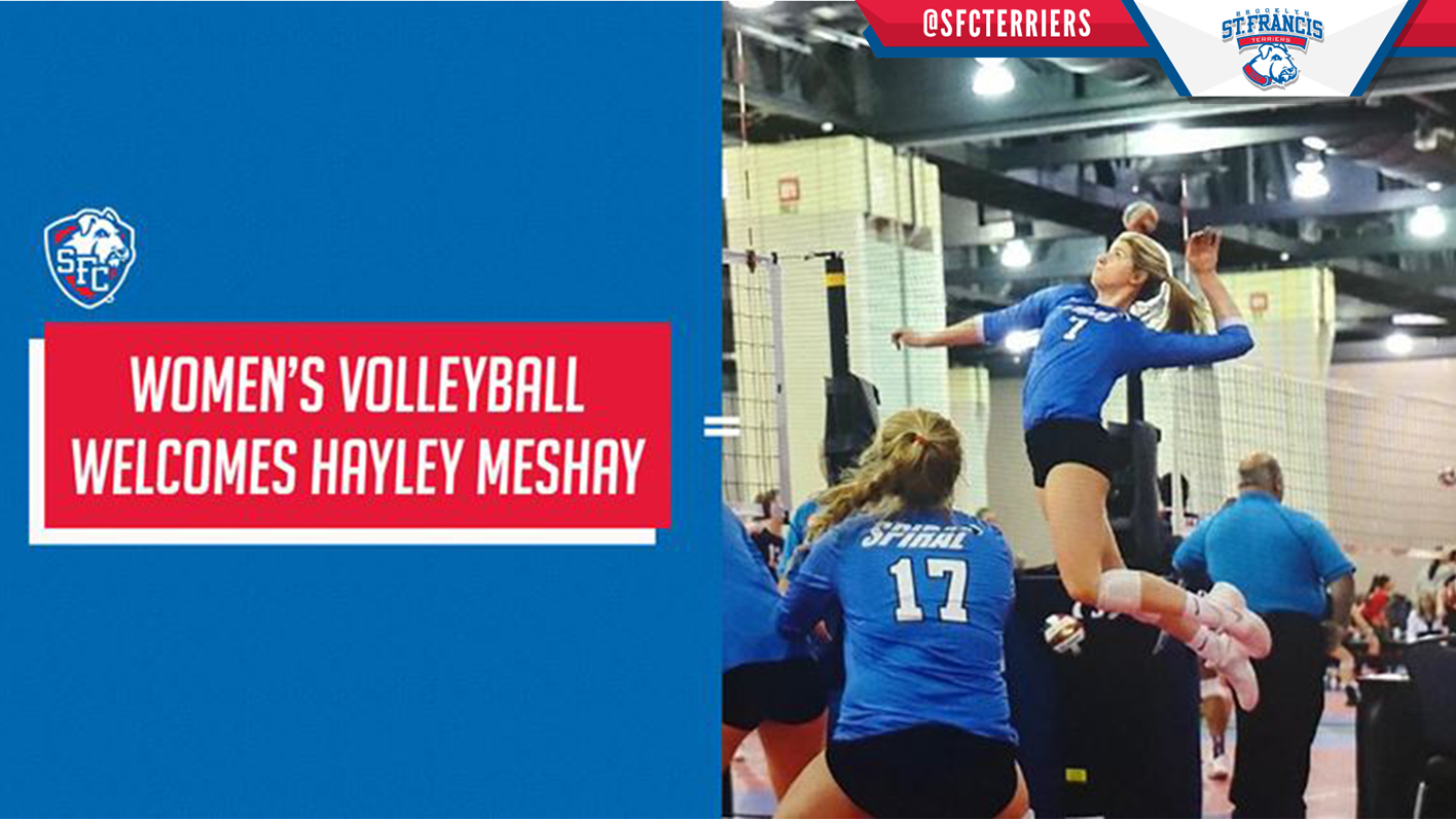 St Francis Brooklyn Women S Volleyball Announces Signing Of Hayley Meshay Northeast Conference